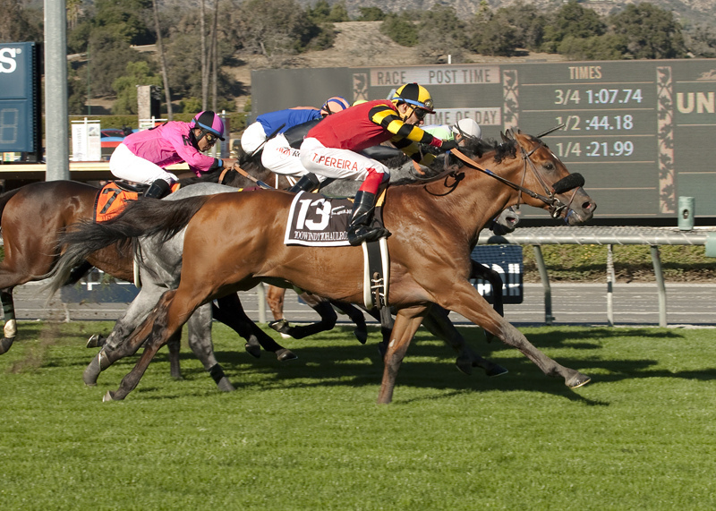 Toowindytohaulrox and jockey Tiago Pereira, outside, overpower Rocket Heat (Edwin Maldonado), inside, to win the Grade III, $100,000 Daytona Stakes, Saturday, December 26, 2015 at Santa Anita Park, Arcadia CA.© BENOIT PHOTO