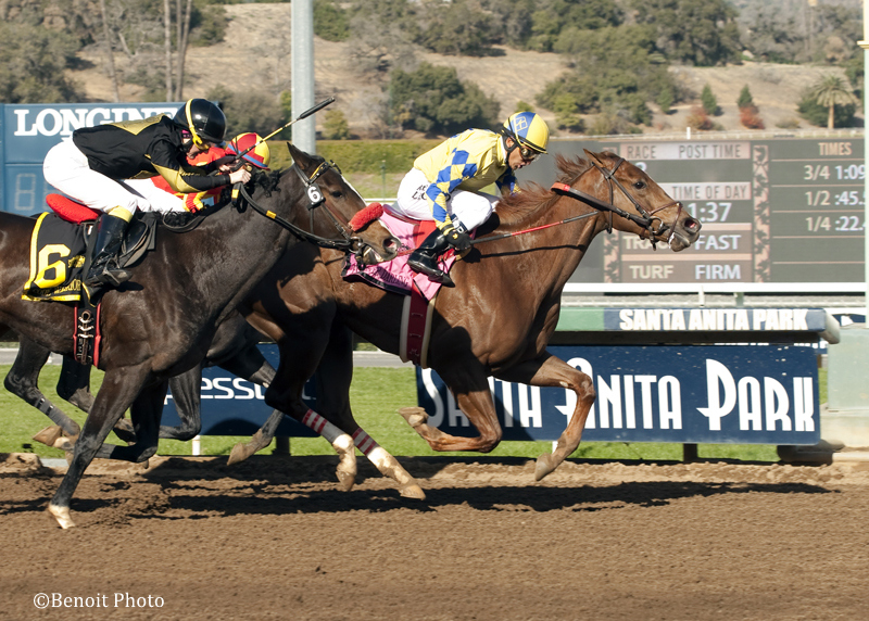 Forever Darling and Rafael Bejarano win the $200,000 Grade II Santa Ynez Stakes Saturday, January 2, 2016 at Santa Anita Park, Arcadia, CA. Benoit Photo